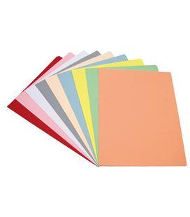 Subcarpeta folio 180grs gris claro c.50 grafolioplas 00017371