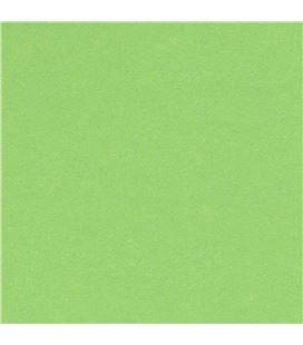 Cartulina 50x65cms 25h 185grs verde manzana guarro c200040237